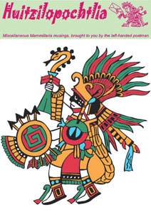 huitzilopochtli medium